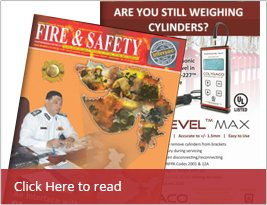 Fire & Safety Security - Jan 2016